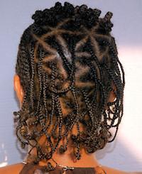Natural Braids Hairstyle