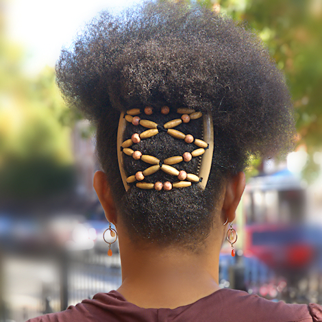 Black Hairstyle Afro - Back View