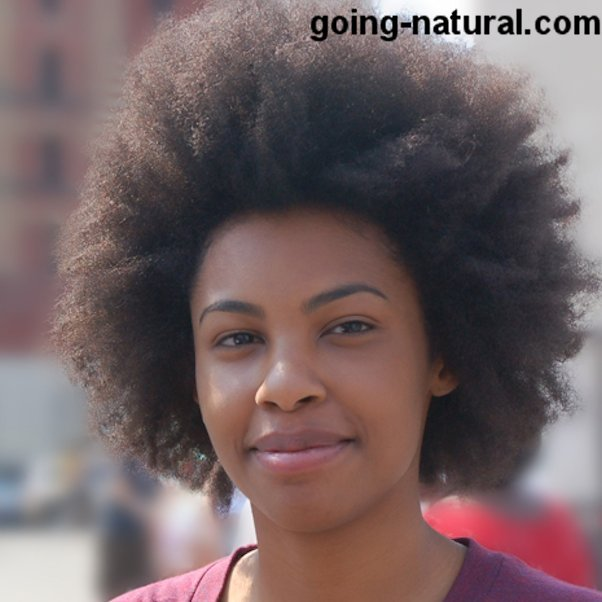 Big Afro Natural HairStyle at BAM Festival