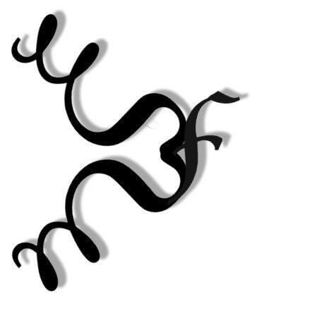 What Naturals Love Logo